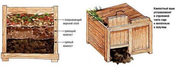 Процедурата за въвеждане на пролетни торове за градината от органични до минерални